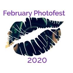 February PhotoFest logo of a colourful lip print