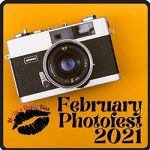 February Photofest logo of an old camera on a mustard yellow background